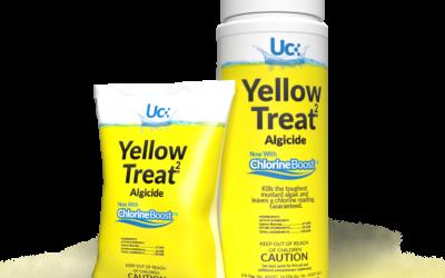 Yellow Treat 2